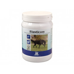 1874_produktbild-derby-elasticum-500-g-dose
