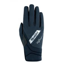 roeckl-waregem-glove__21646_450x450_crop_center