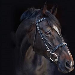 Uzdečka s otěži Horseware Bridle Leather Amigo