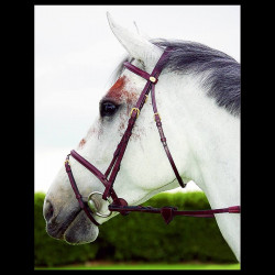 Uzdečka Dy´on NE Bridle Flash Nose B101
