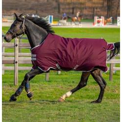 Deka výběhová Horseware Amigo Hero Ripstop 200g